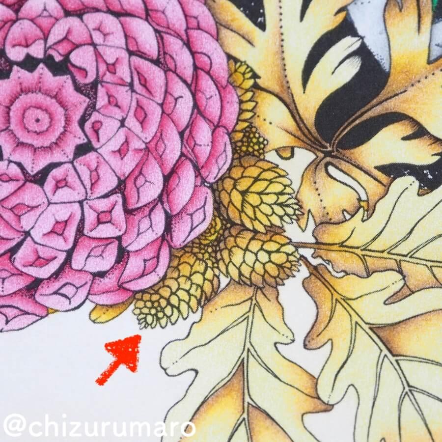 f:id:chizurumaro:20180619150955j:plain