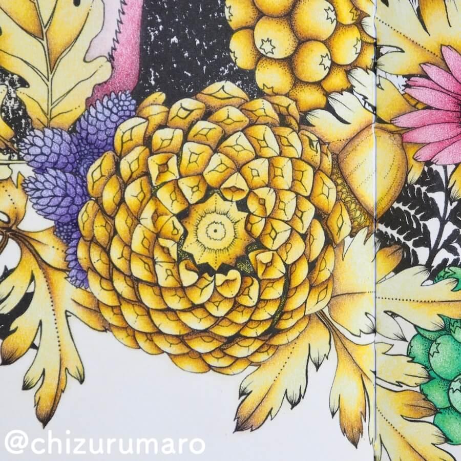 f:id:chizurumaro:20180619151023j:plain