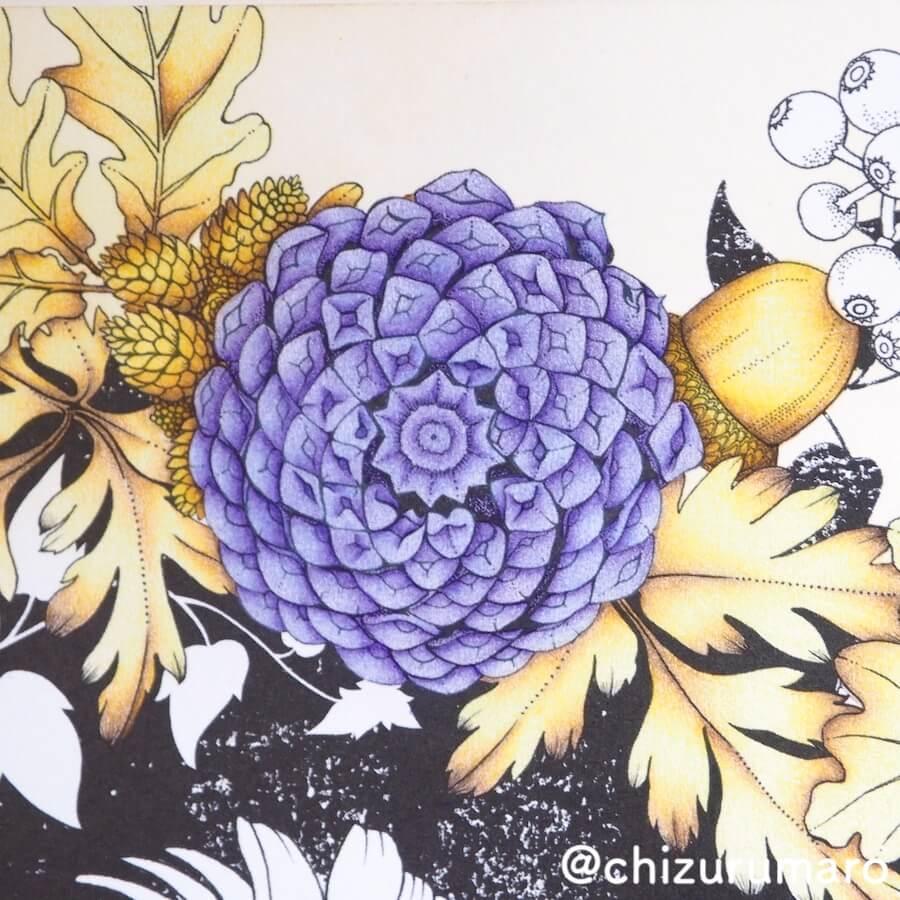 f:id:chizurumaro:20180620135632j:plain