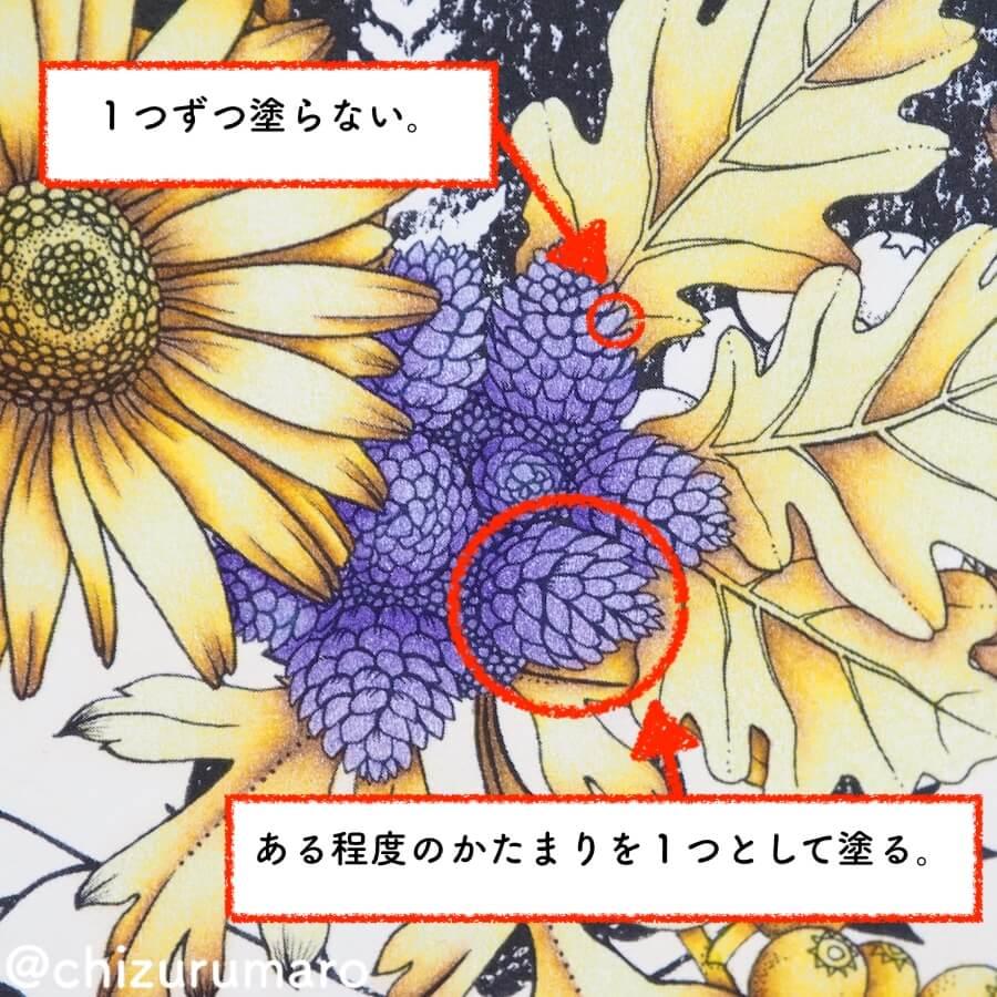f:id:chizurumaro:20180620141017j:plain