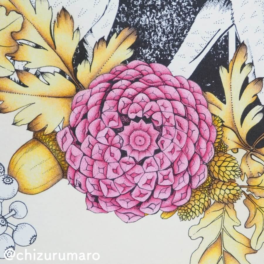 f:id:chizurumaro:20180620141737j:plain