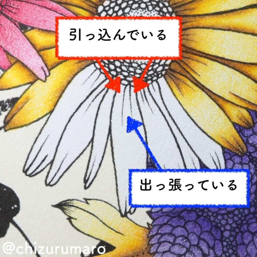 f:id:chizurumaro:20180723145051j:plain
