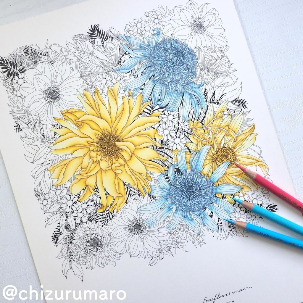 f:id:chizurumaro:20190226122850j:plain