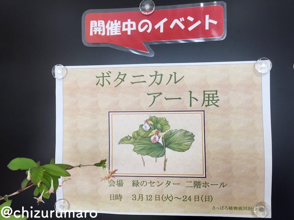 f:id:chizurumaro:20190322110652j:plain