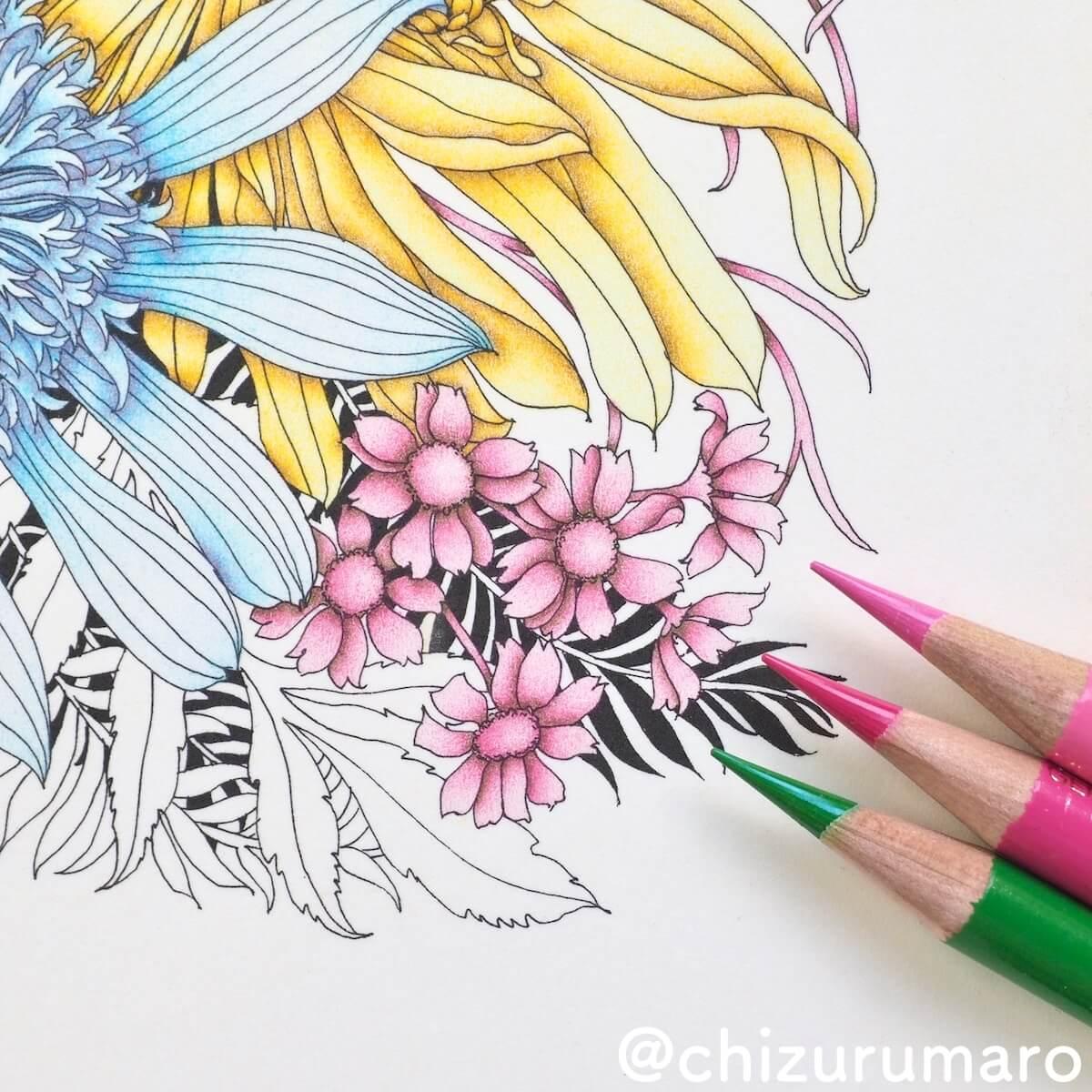 f:id:chizurumaro:20190427143123j:plain