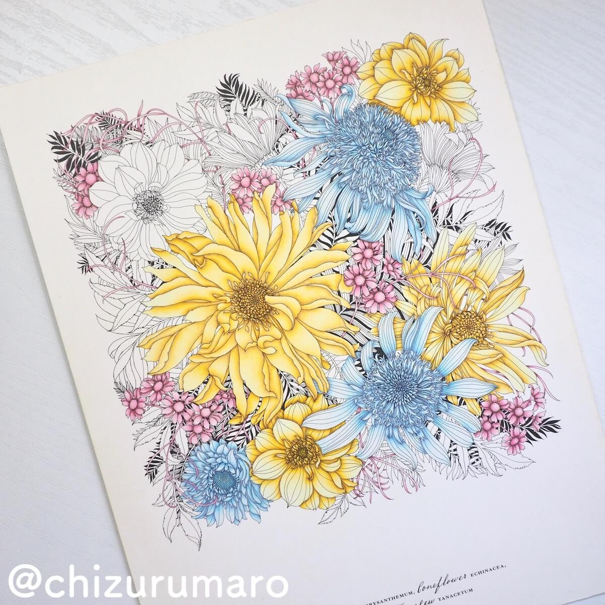 f:id:chizurumaro:20190427143918j:plain