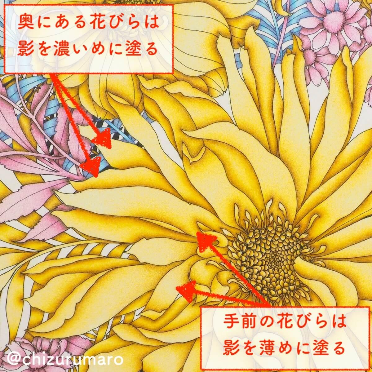 f:id:chizurumaro:20190827155541j:plain