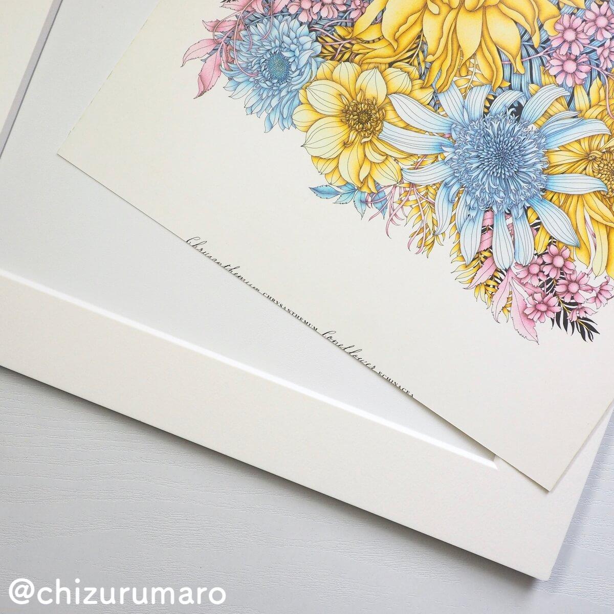 f:id:chizurumaro:20190902160229j:plain