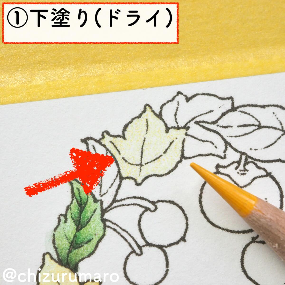 f:id:chizurumaro:20200217142044j:plain