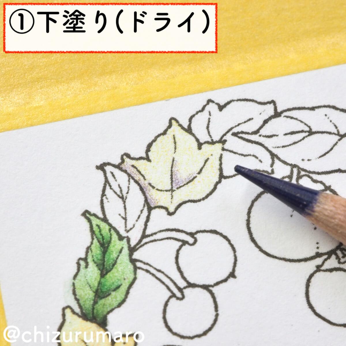 f:id:chizurumaro:20200217142855j:plain