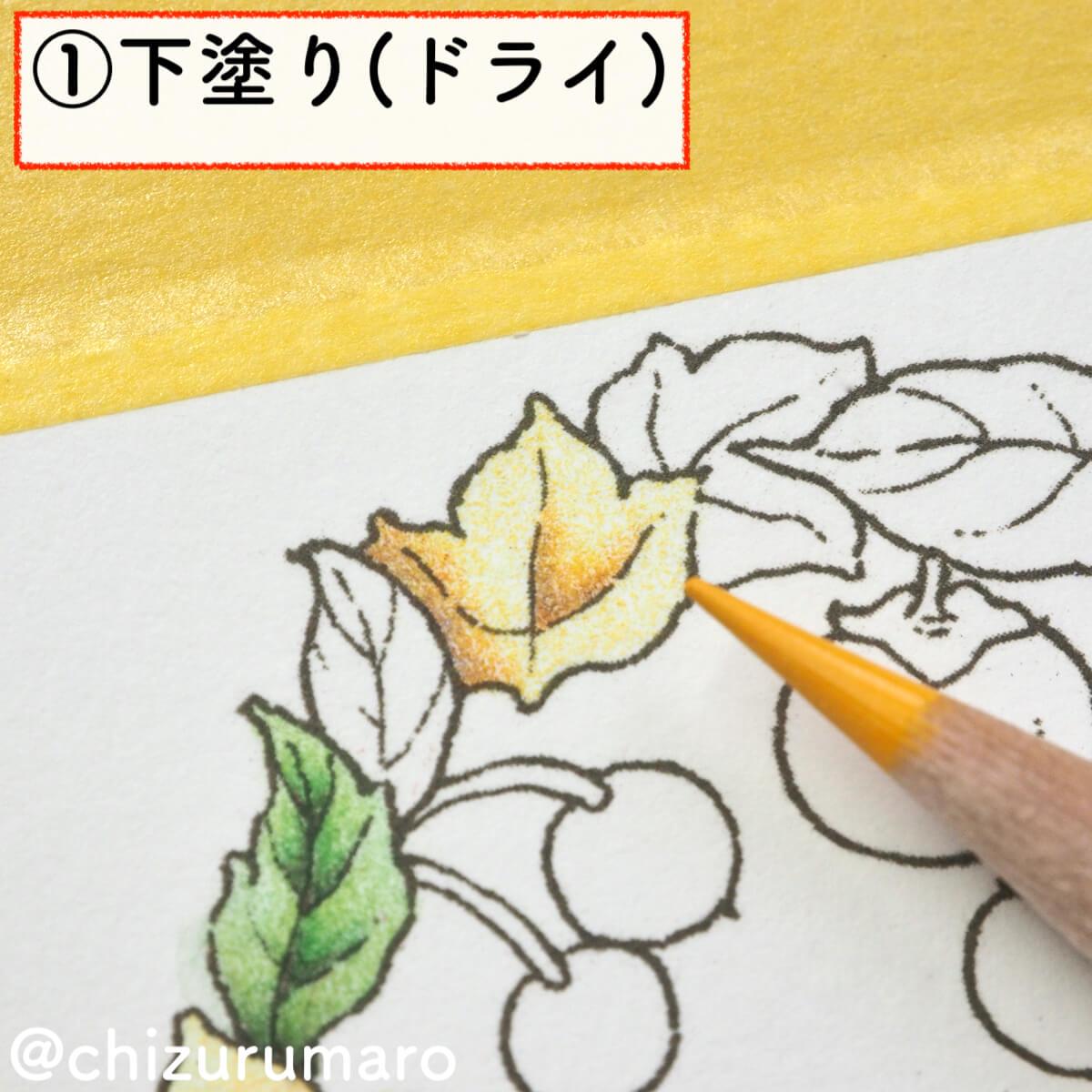 f:id:chizurumaro:20200217143111j:plain