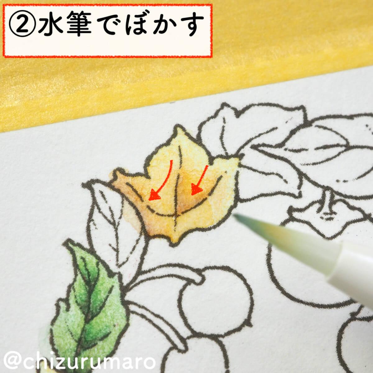 f:id:chizurumaro:20200217143226j:plain