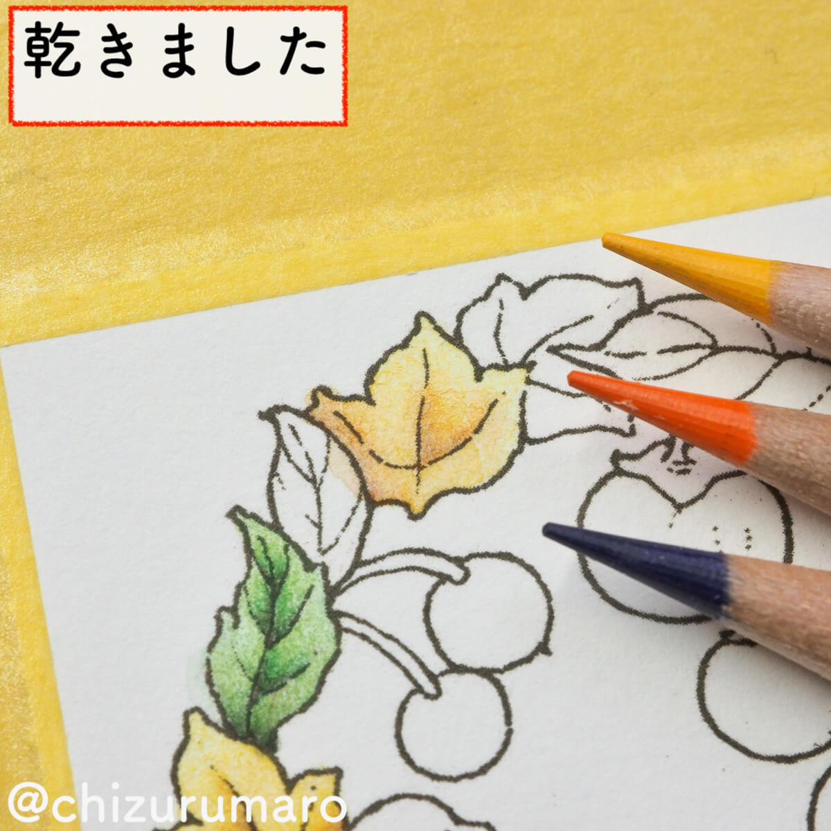 f:id:chizurumaro:20200217143502j:plain