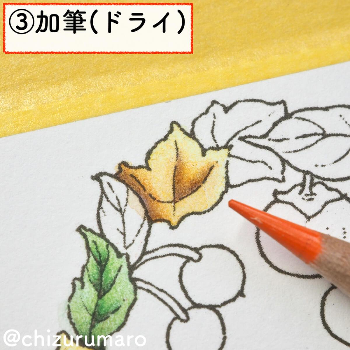 f:id:chizurumaro:20200217143934j:plain