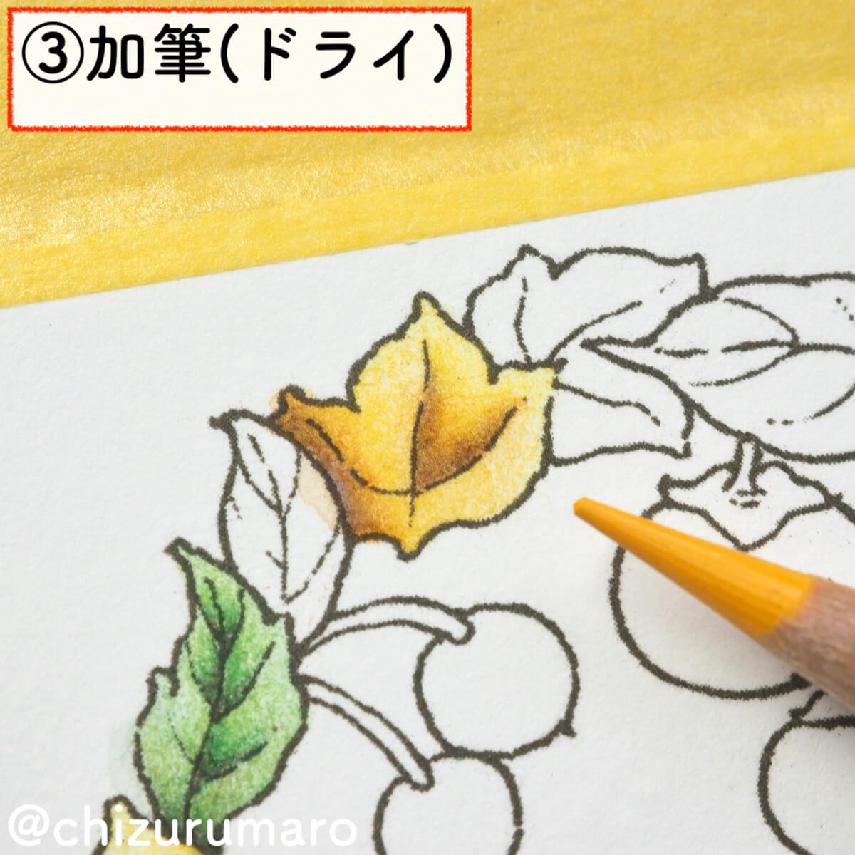 f:id:chizurumaro:20200217144021j:plain
