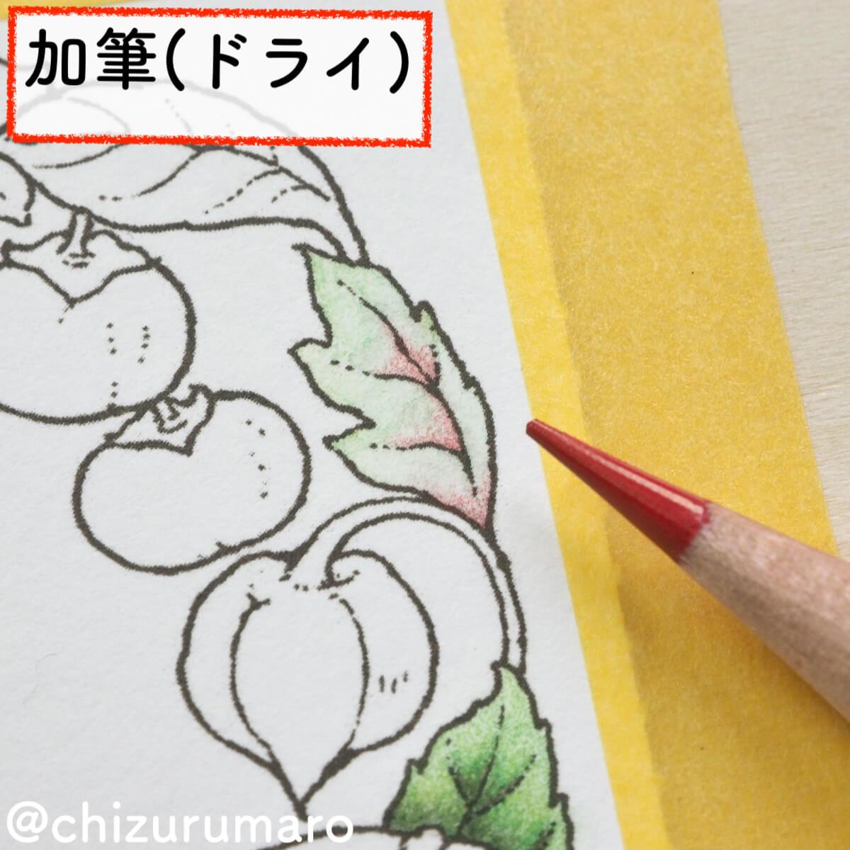 f:id:chizurumaro:20200217145431j:plain