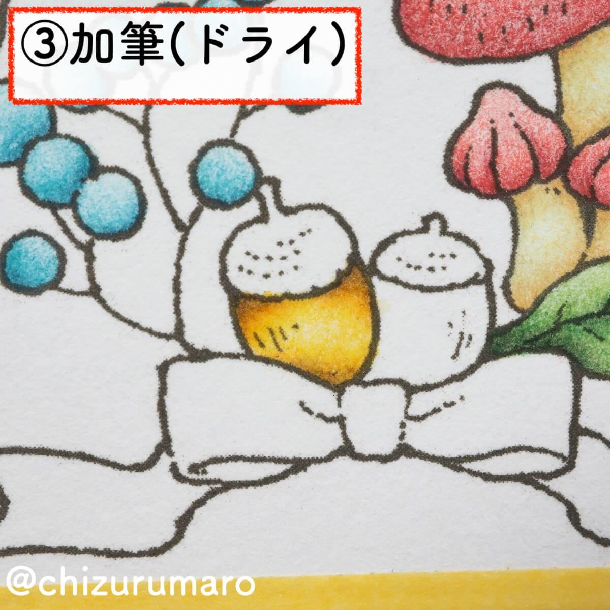 f:id:chizurumaro:20200218125315j:plain