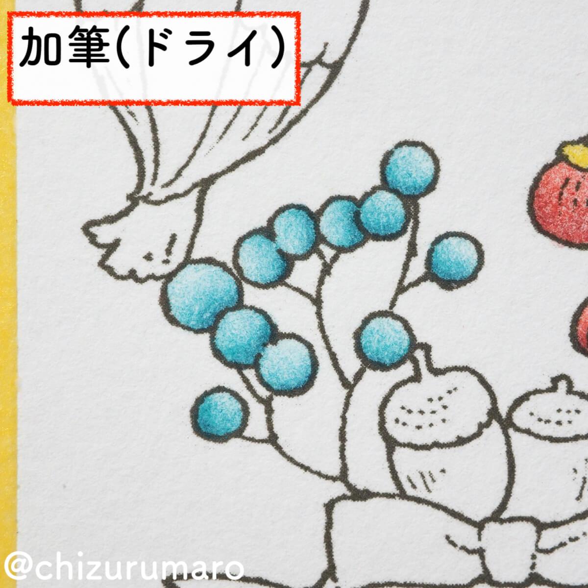 f:id:chizurumaro:20200218155546j:plain