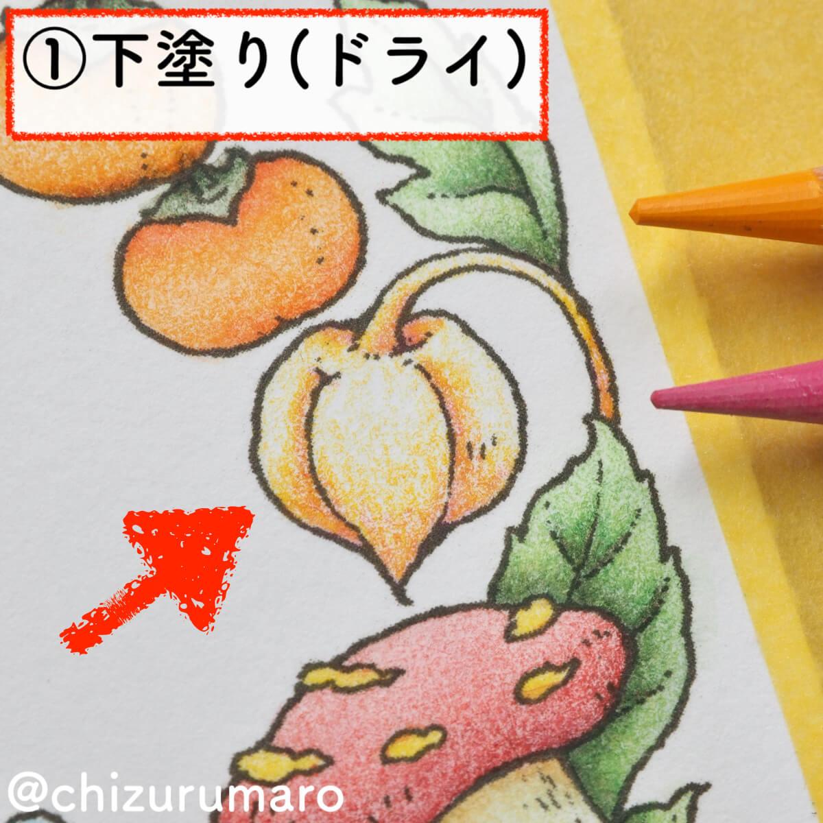 f:id:chizurumaro:20200218160050j:plain