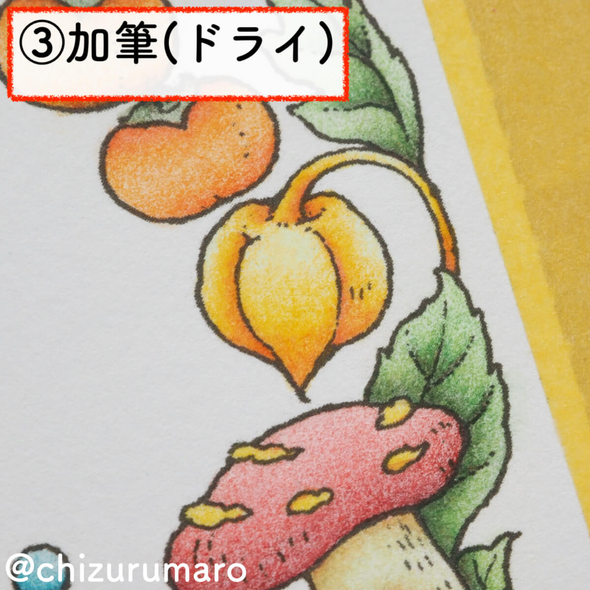 f:id:chizurumaro:20200218160111j:plain