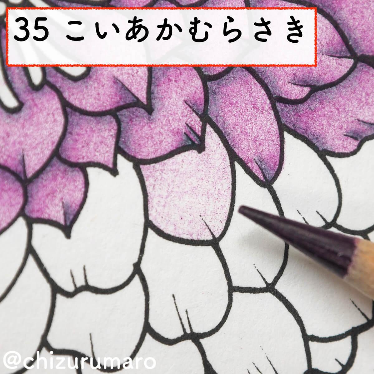 f:id:chizurumaro:20200311151623j:plain
