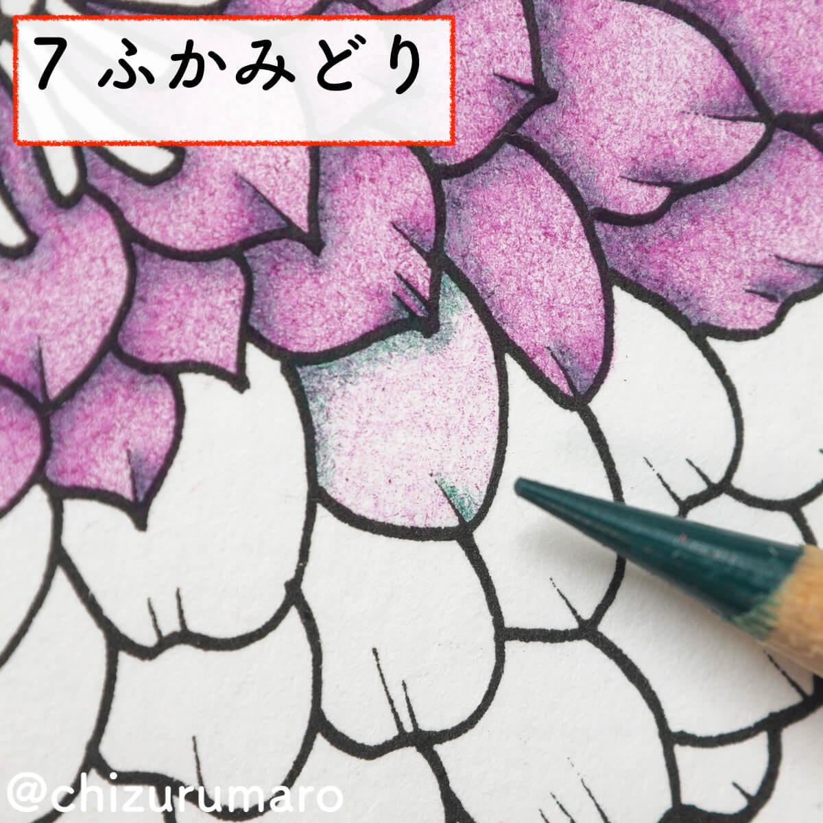 f:id:chizurumaro:20200311151727j:plain