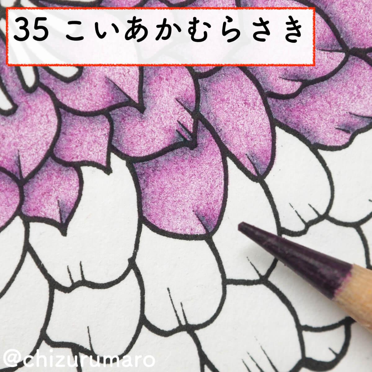f:id:chizurumaro:20200311152008j:plain