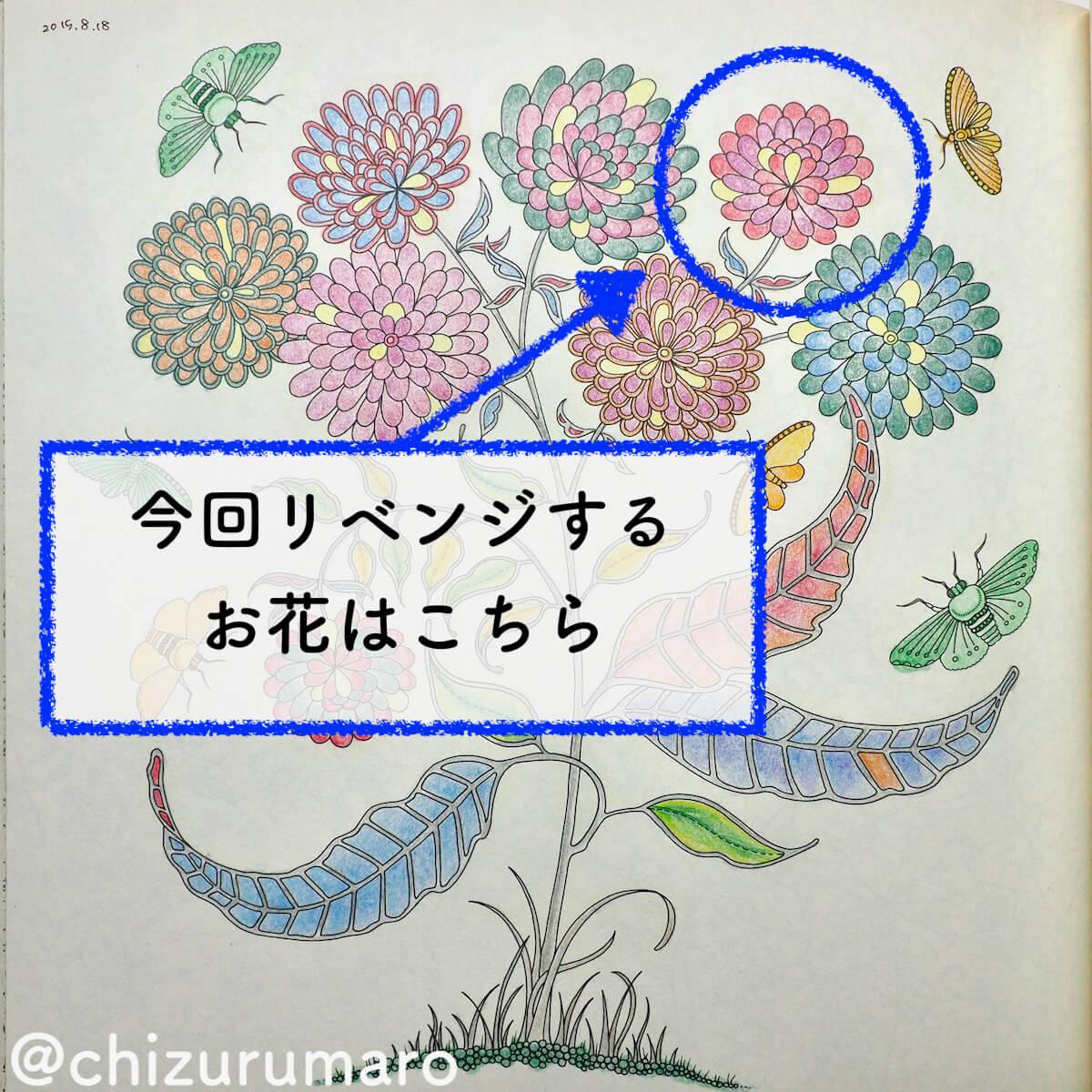 f:id:chizurumaro:20200326113312j:plain