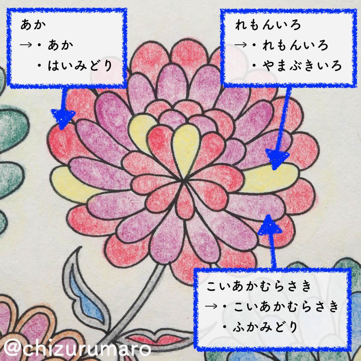 f:id:chizurumaro:20200326113505j:plain