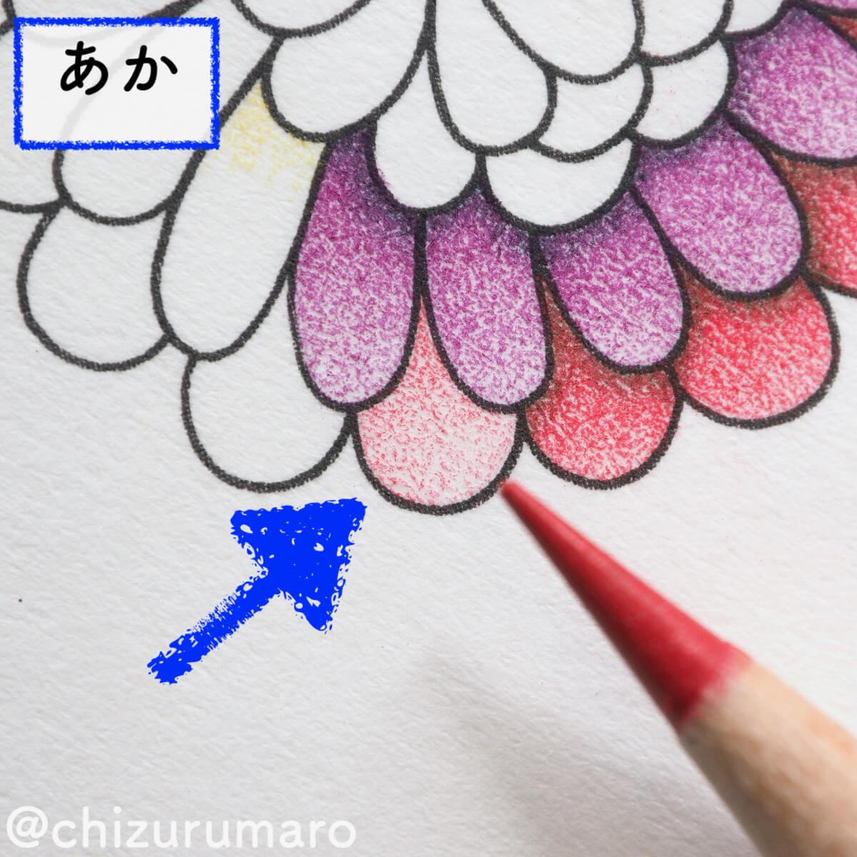 f:id:chizurumaro:20200326114852j:plain