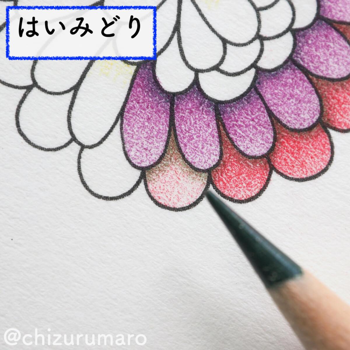 f:id:chizurumaro:20200326115008j:plain