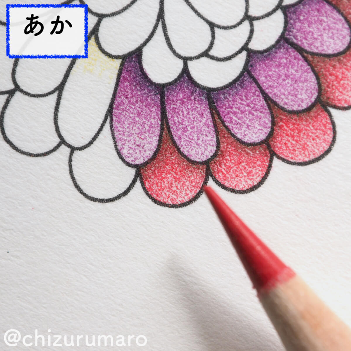 f:id:chizurumaro:20200326115016j:plain