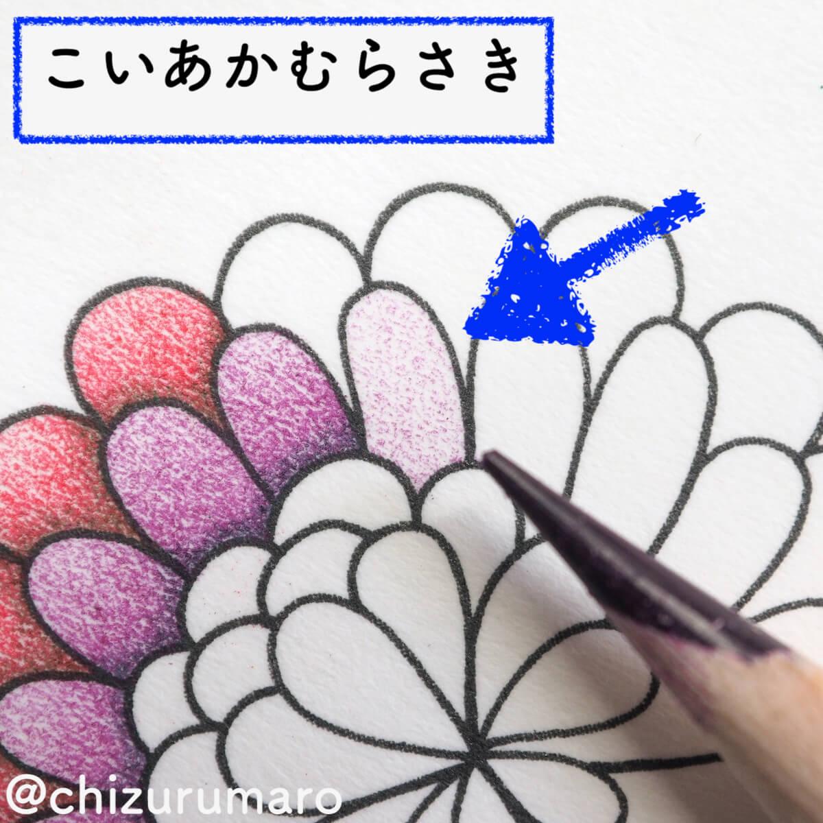 f:id:chizurumaro:20200326115038j:plain