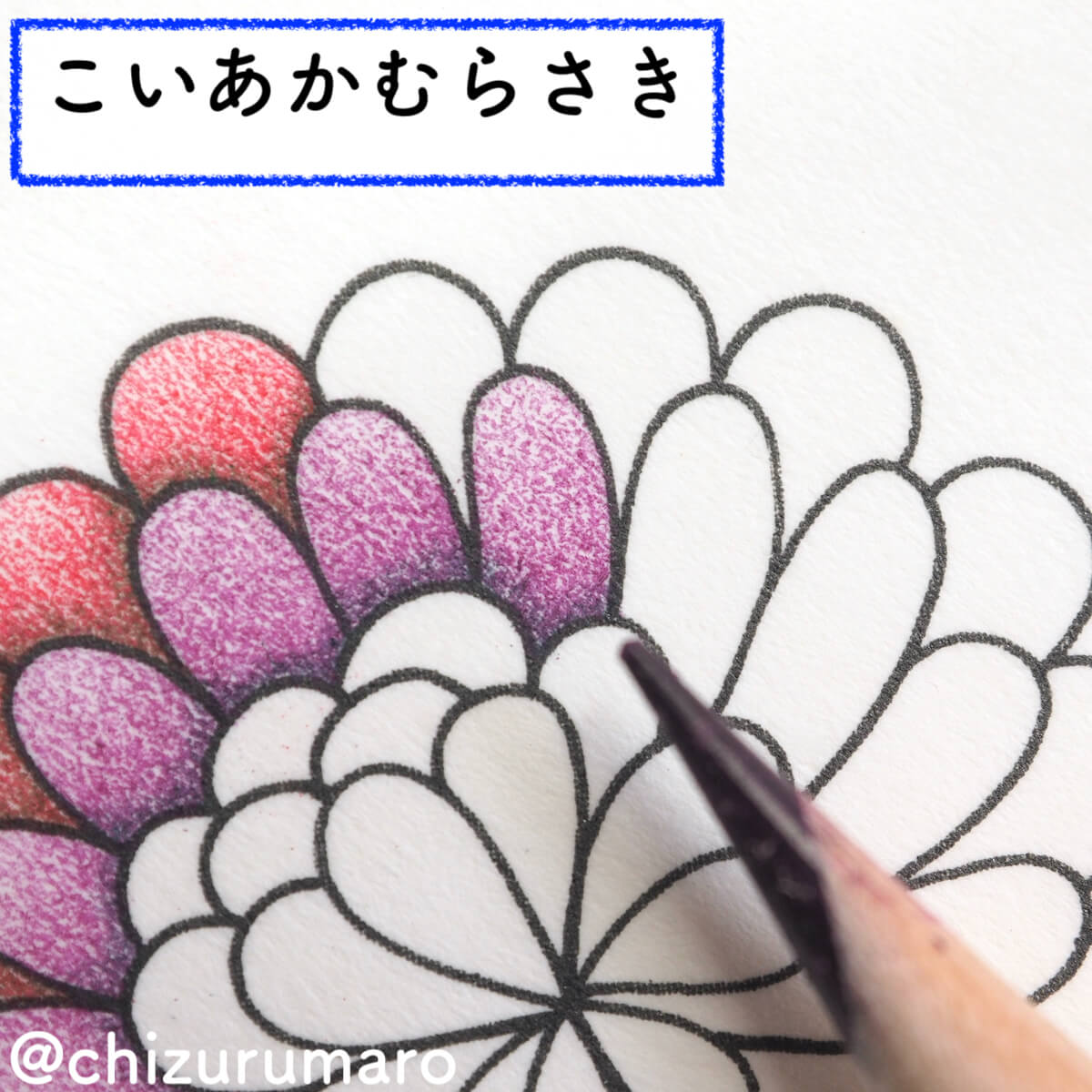 f:id:chizurumaro:20200326115104j:plain