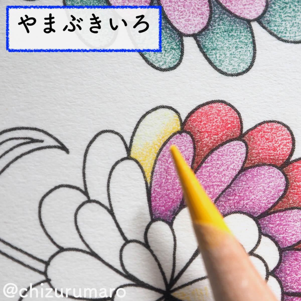 f:id:chizurumaro:20200326115131j:plain