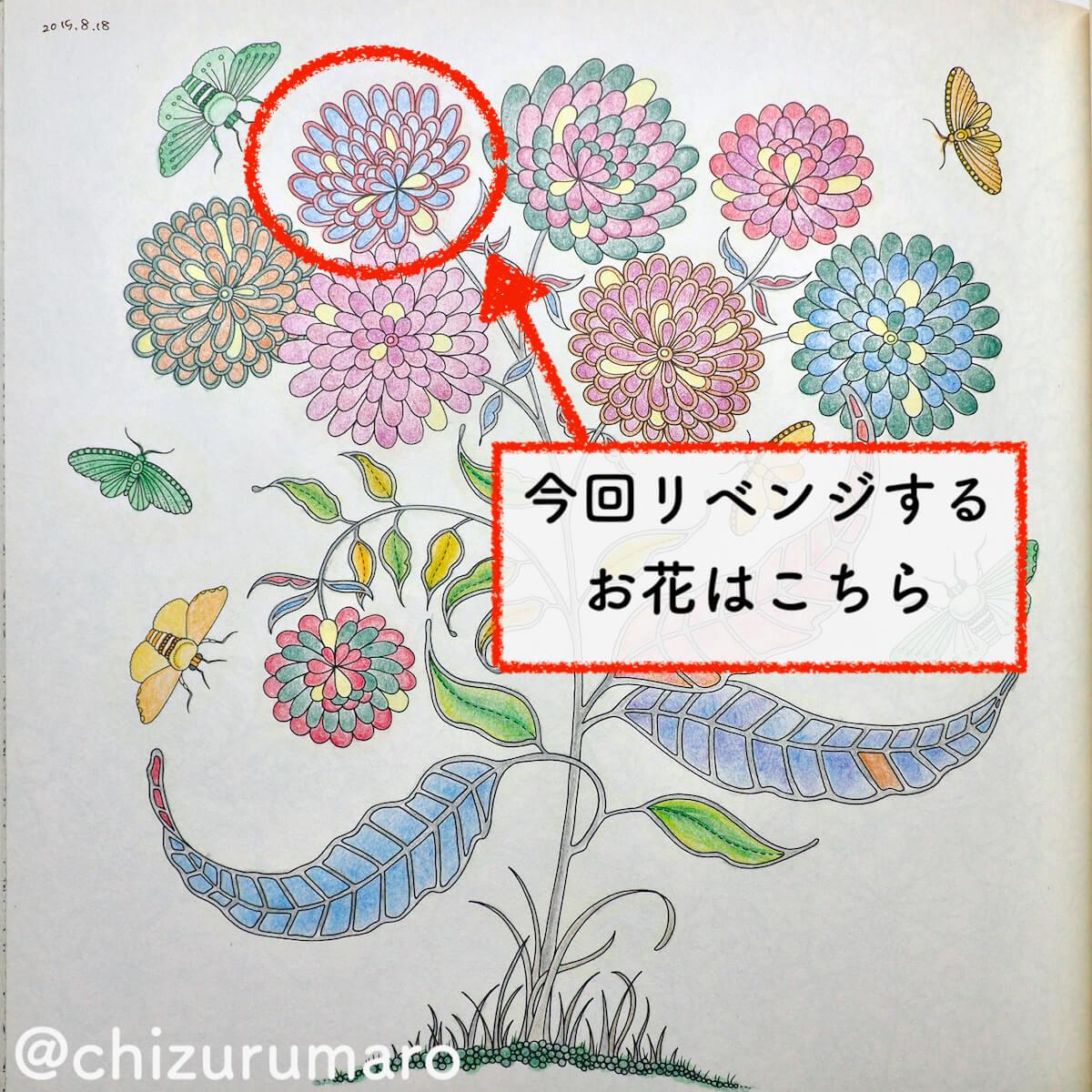 f:id:chizurumaro:20200404105309j:plain