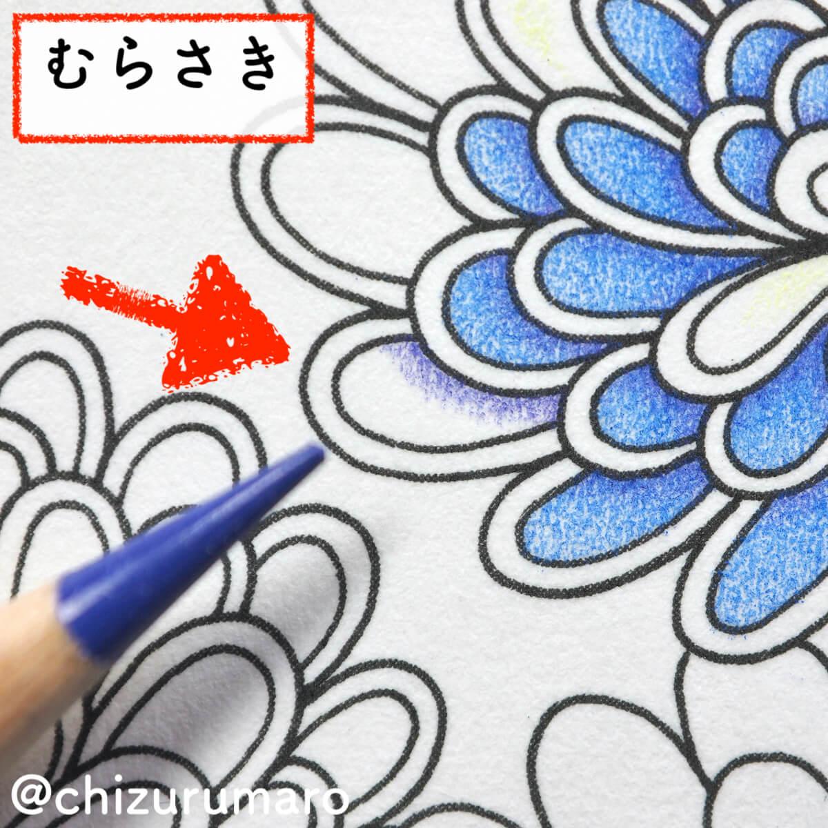 f:id:chizurumaro:20200404105832j:plain