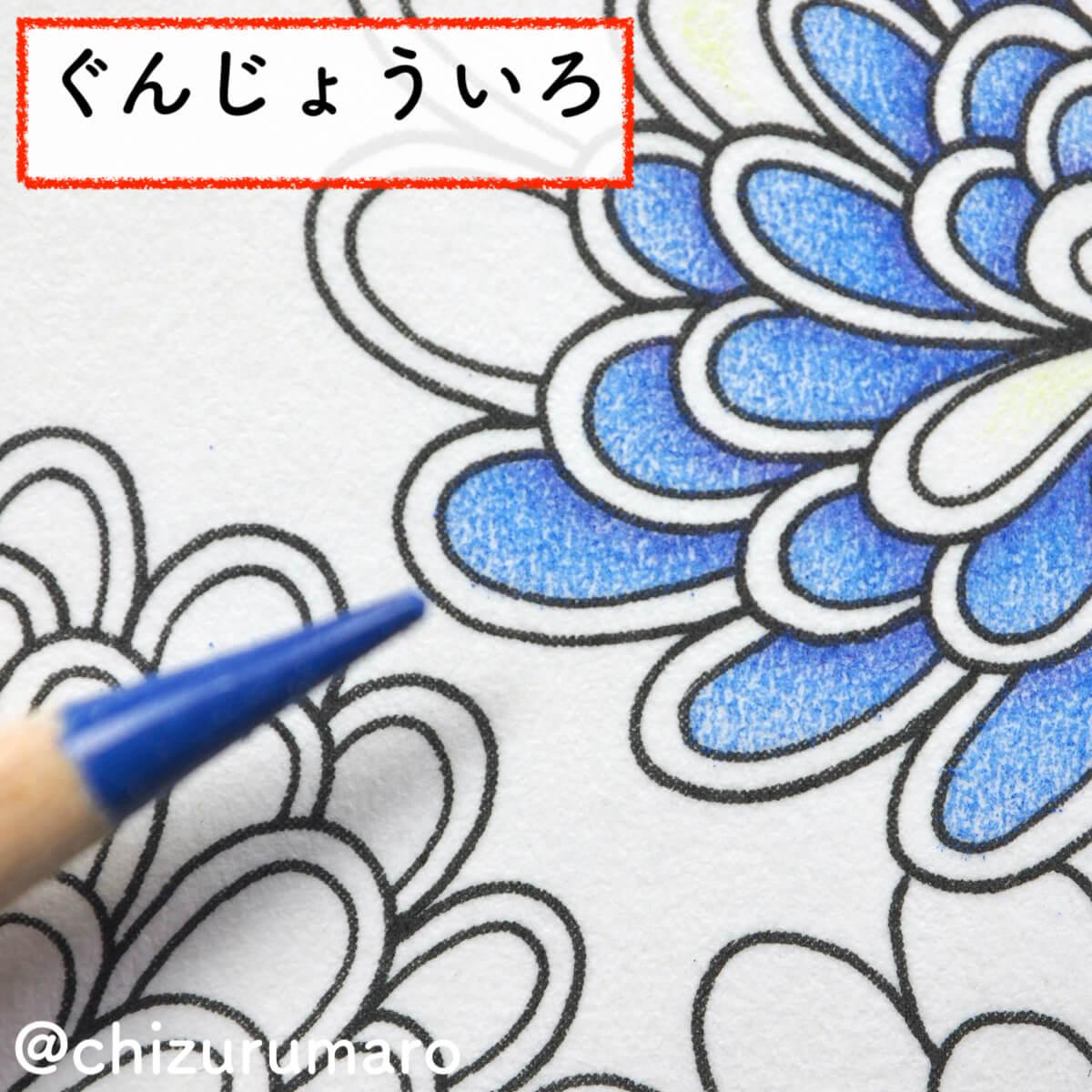 f:id:chizurumaro:20200404105904j:plain