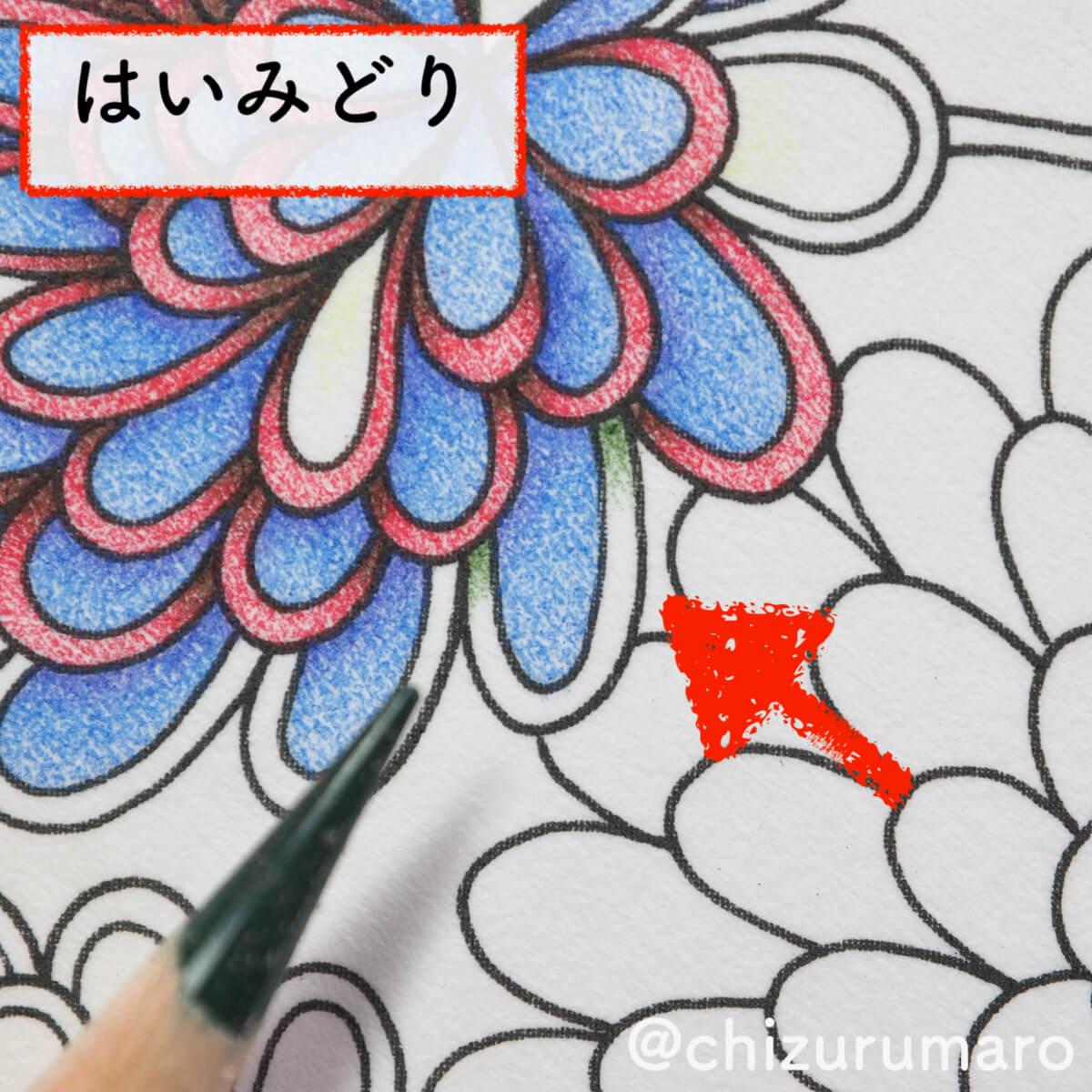f:id:chizurumaro:20200404111129j:plain