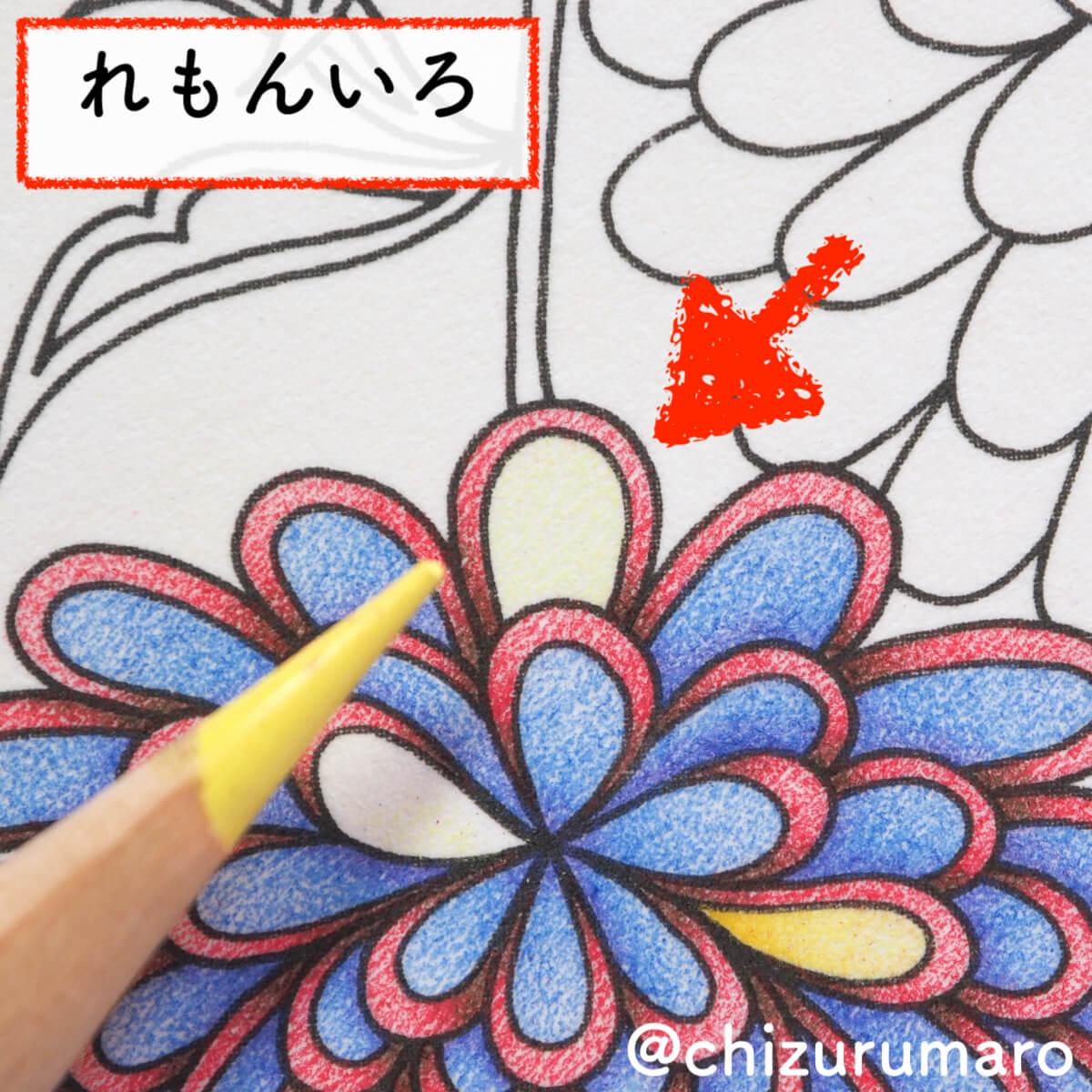 f:id:chizurumaro:20200404113234j:plain