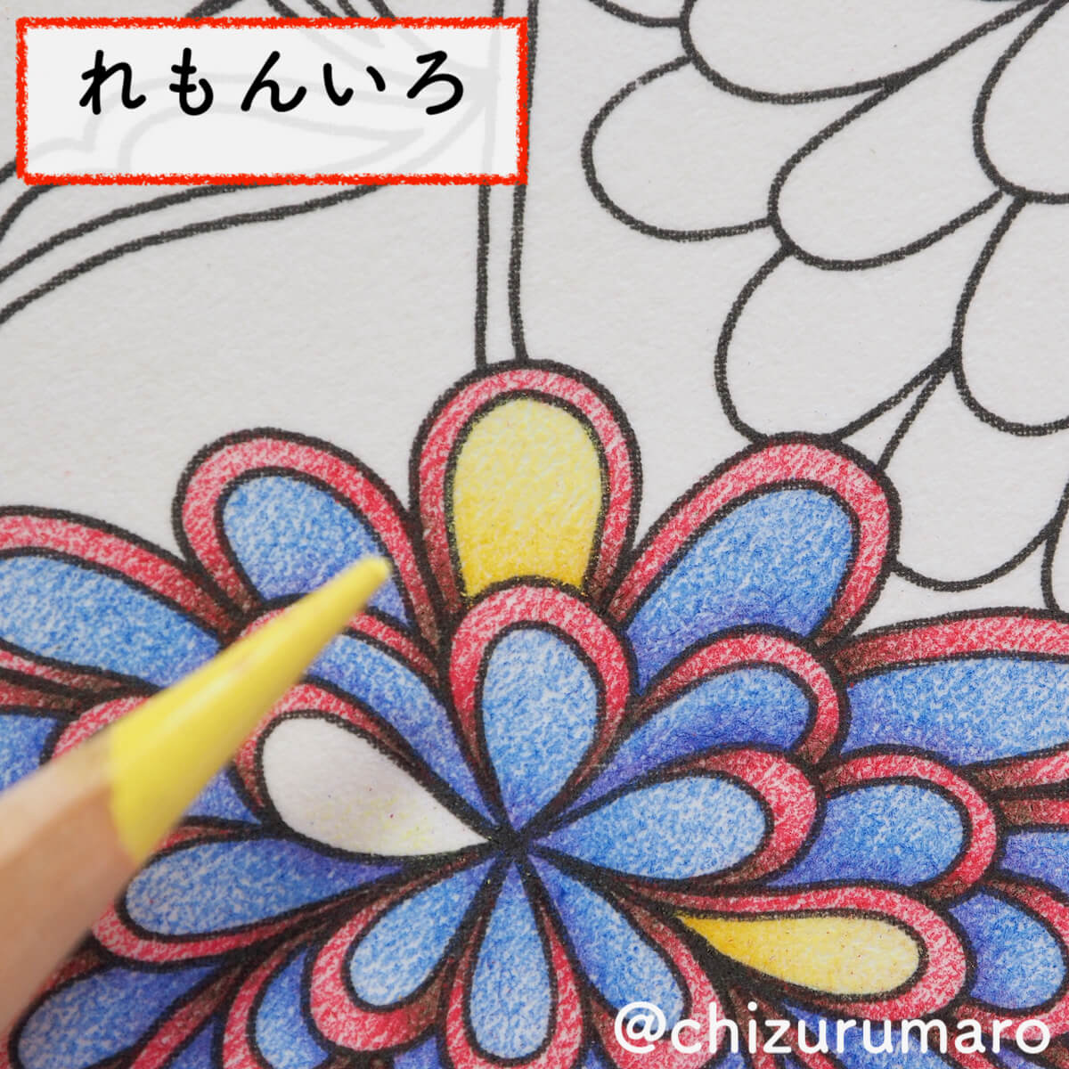 f:id:chizurumaro:20200404113313j:plain