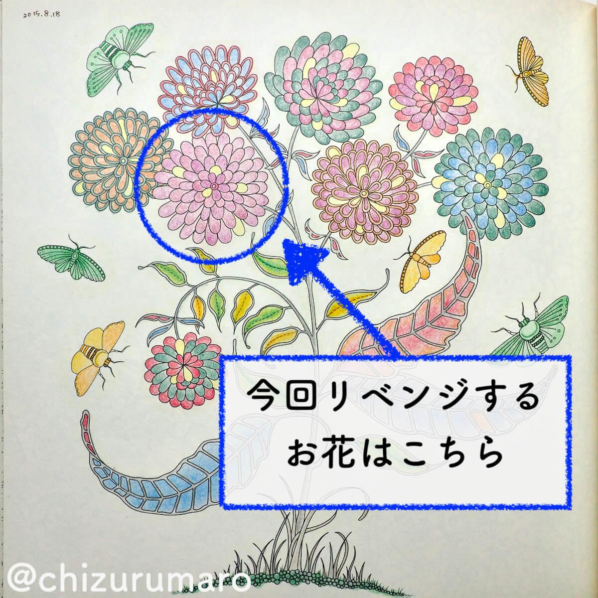 f:id:chizurumaro:20200415162629j:plain