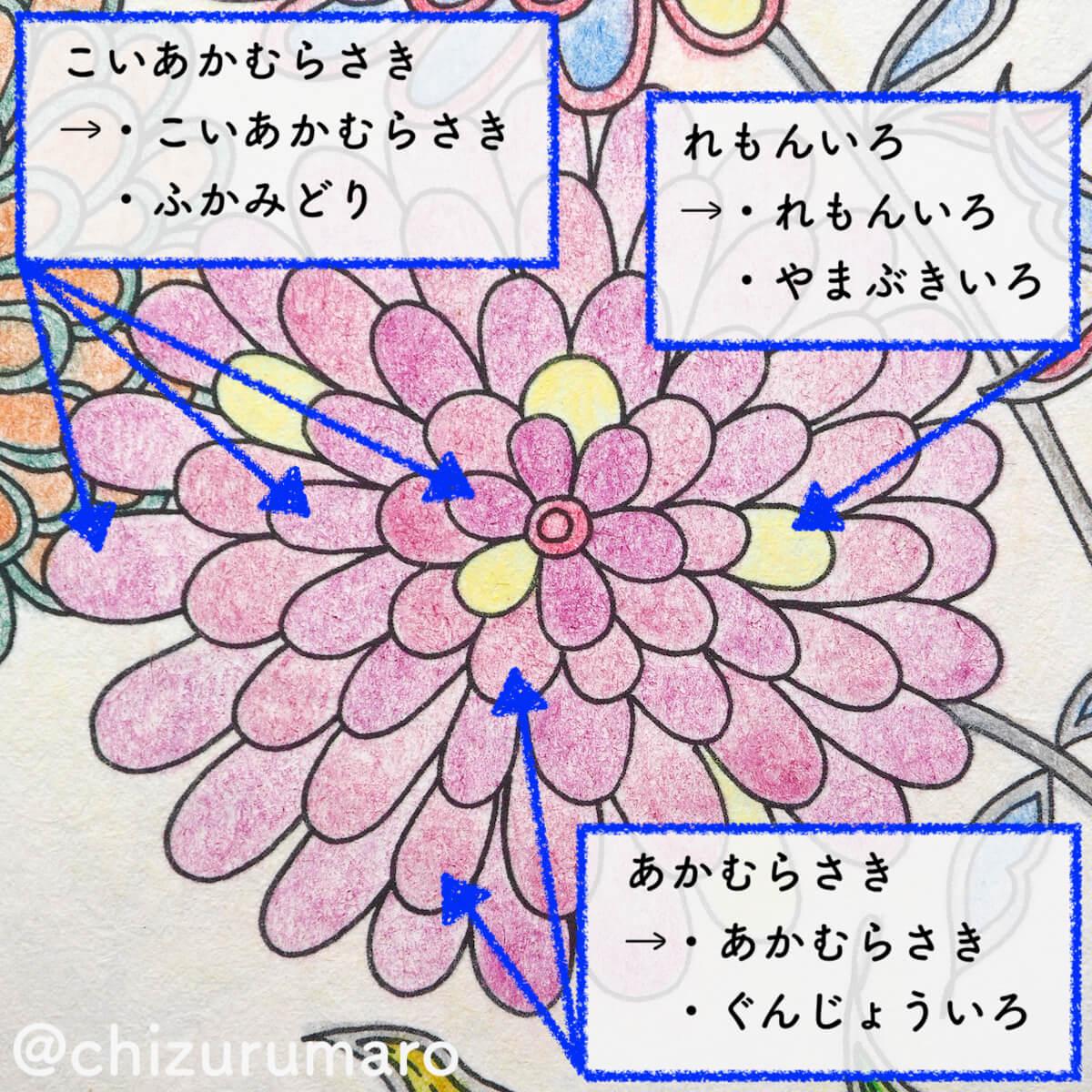 f:id:chizurumaro:20200415162711j:plain