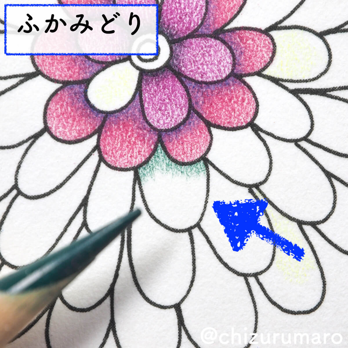 f:id:chizurumaro:20200415163120j:plain