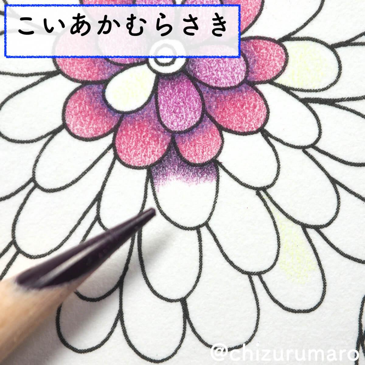 f:id:chizurumaro:20200415163133j:plain