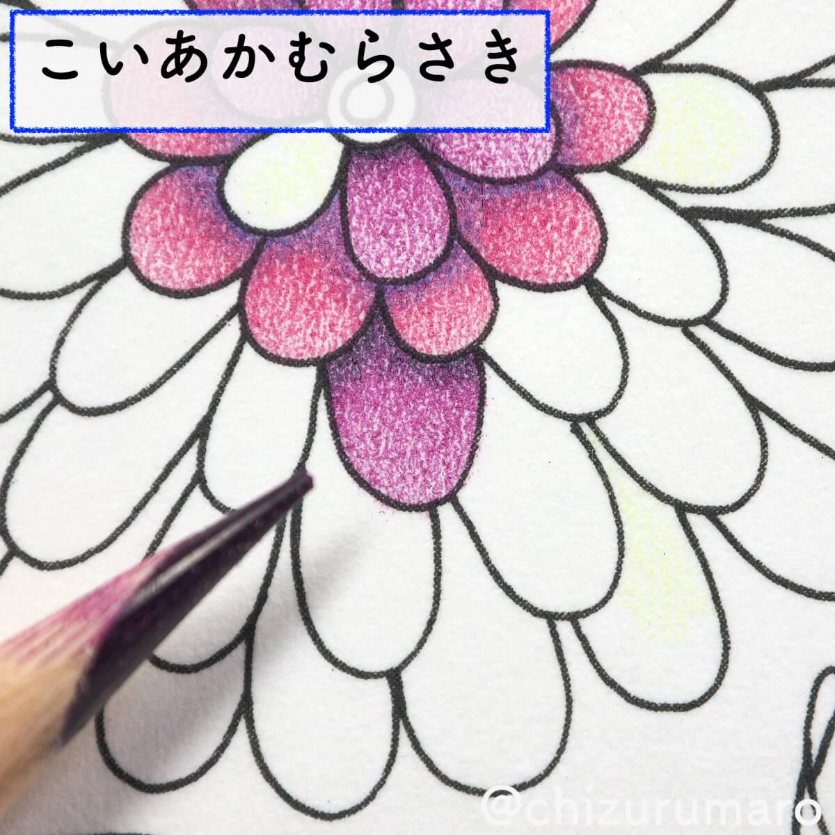 f:id:chizurumaro:20200415163145j:plain
