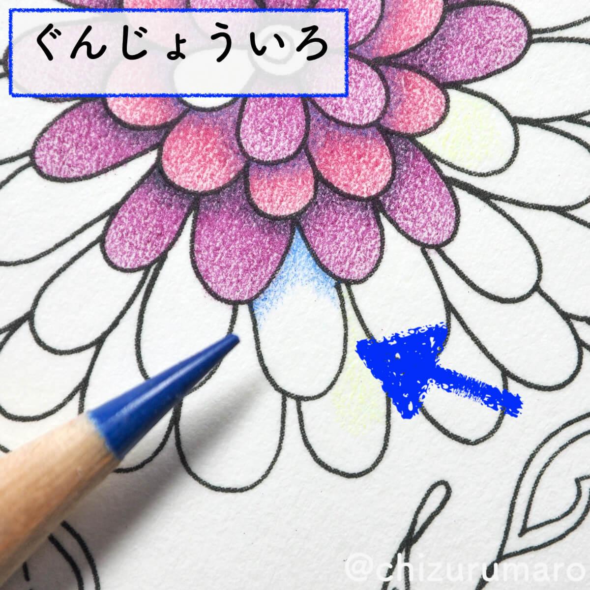 f:id:chizurumaro:20200415163833j:plain