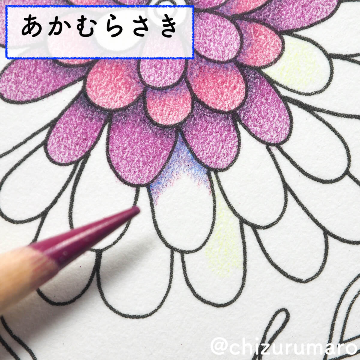 f:id:chizurumaro:20200415164058j:plain