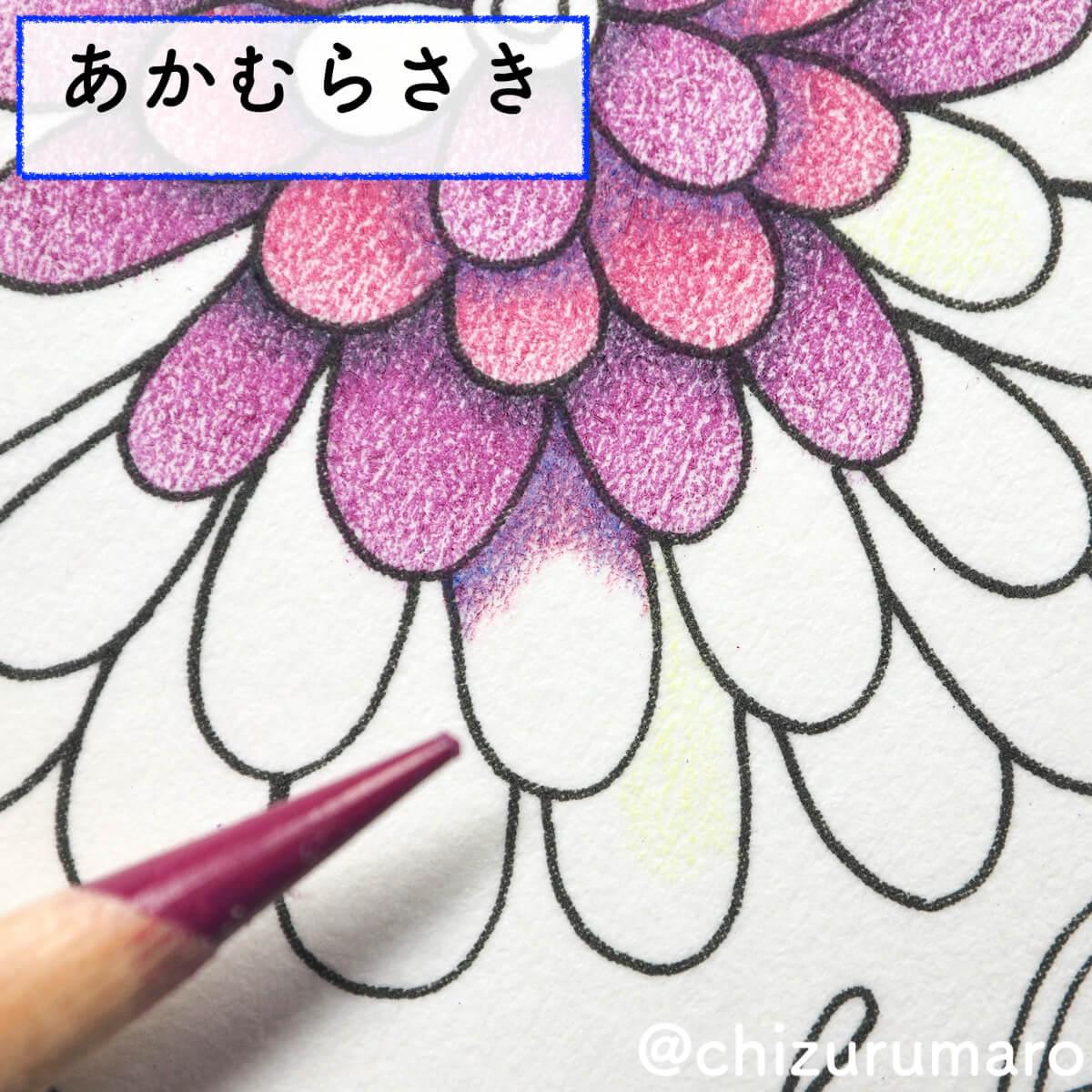 f:id:chizurumaro:20200415164344j:plain