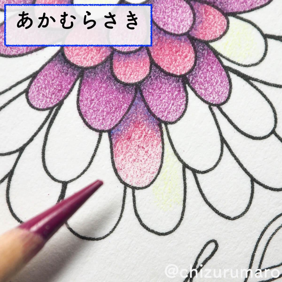f:id:chizurumaro:20200415164505j:plain